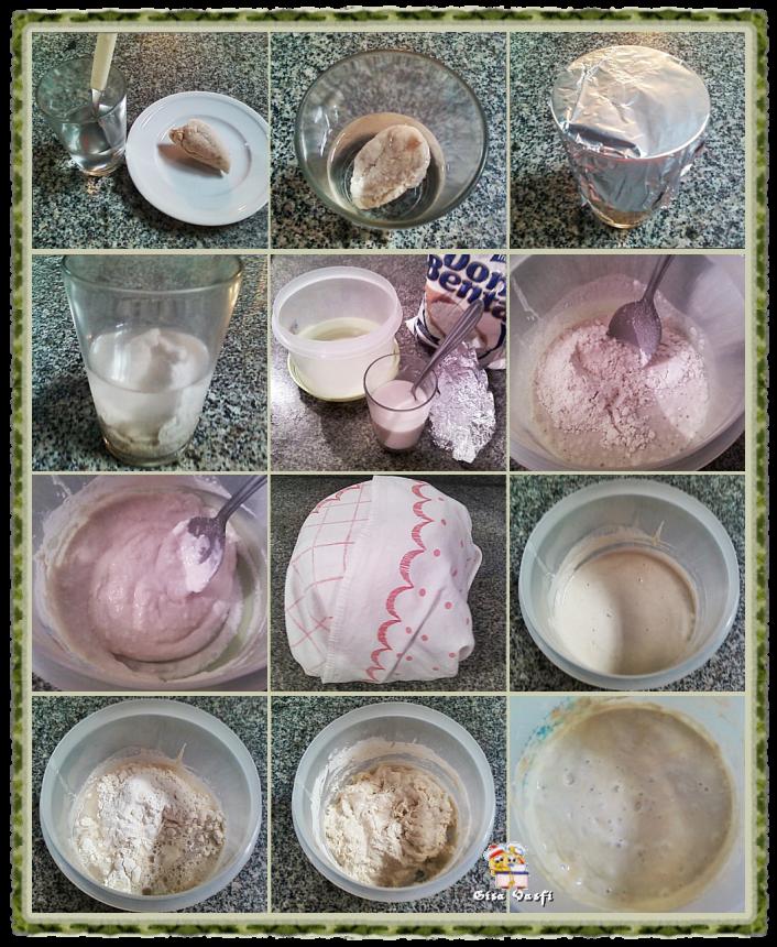 Fermento natural desidratado 4