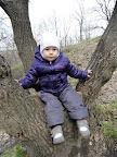 Увидев это дерево, согнала запыхавшегося деда от туда, потребовала ее туда посадить и минут так 10 там сидела...на уговоры слезть - выставляла пальчик, и говорила - ну-ну-ну...соблазнила только бутылкой компота :)