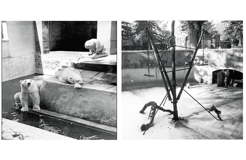 Fotos antiguas de La Casa de Fieras del Retiro