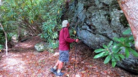 Brasstown Bald Arkaquah Trail
