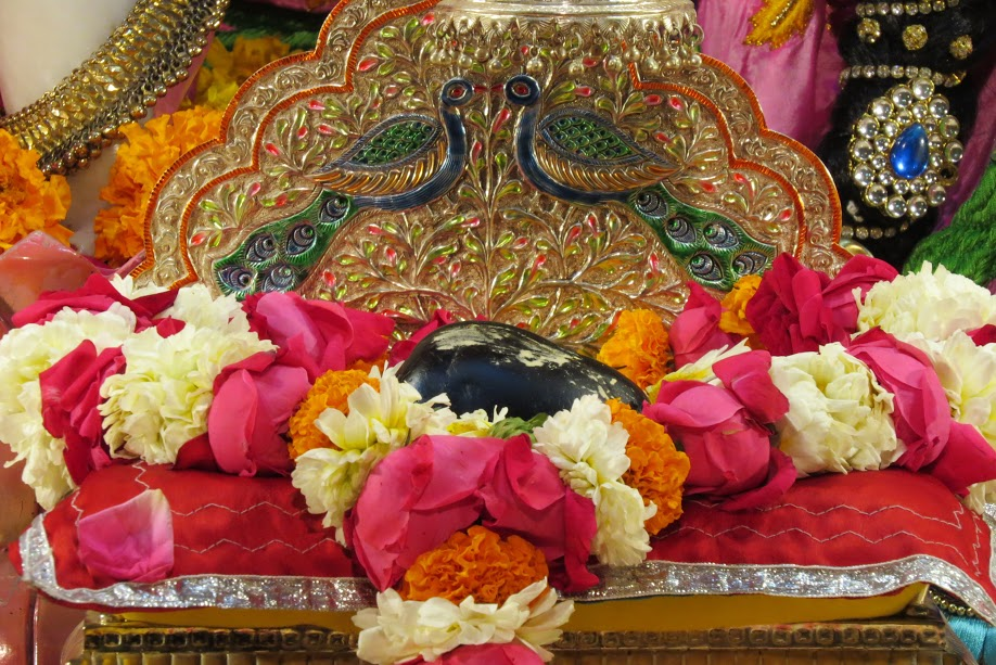 ISKCON Vallabh vidhyanagar Deity Darshan 19 jan 2017 (4)