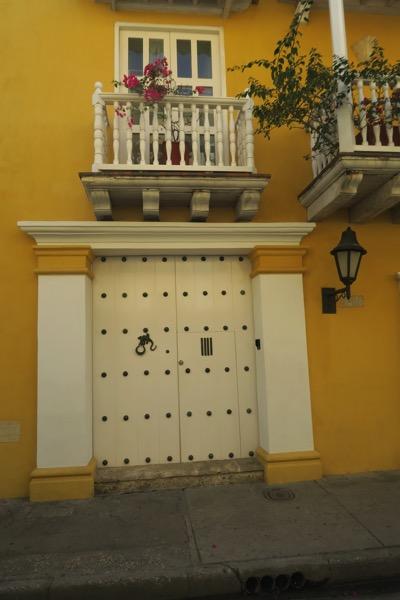 Iguana Door