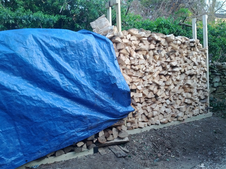 Wood Split and piled and covered for drying