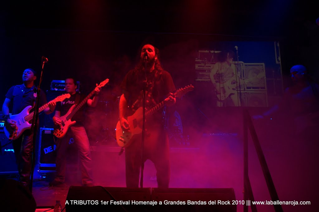 A TRIBUTOS 1er Festival Homenaje a Grandes Bandas del Rock 2010 - DSC_0133.jpg