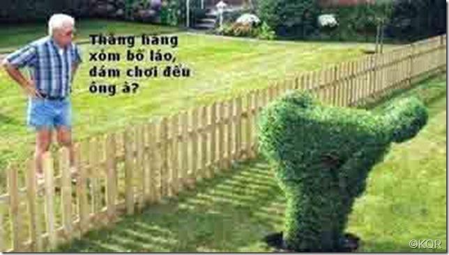 Hàng xóm chơi đểu