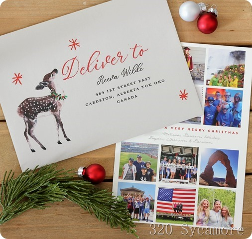 minted christmas cards address delivery