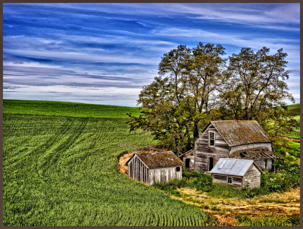 """Abandoned Palouse Farmhouse"" by Tim Snyder -- Honorable Mention A general"