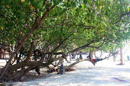 pulau harapan, 29-30 agustus 2015 Canon 156