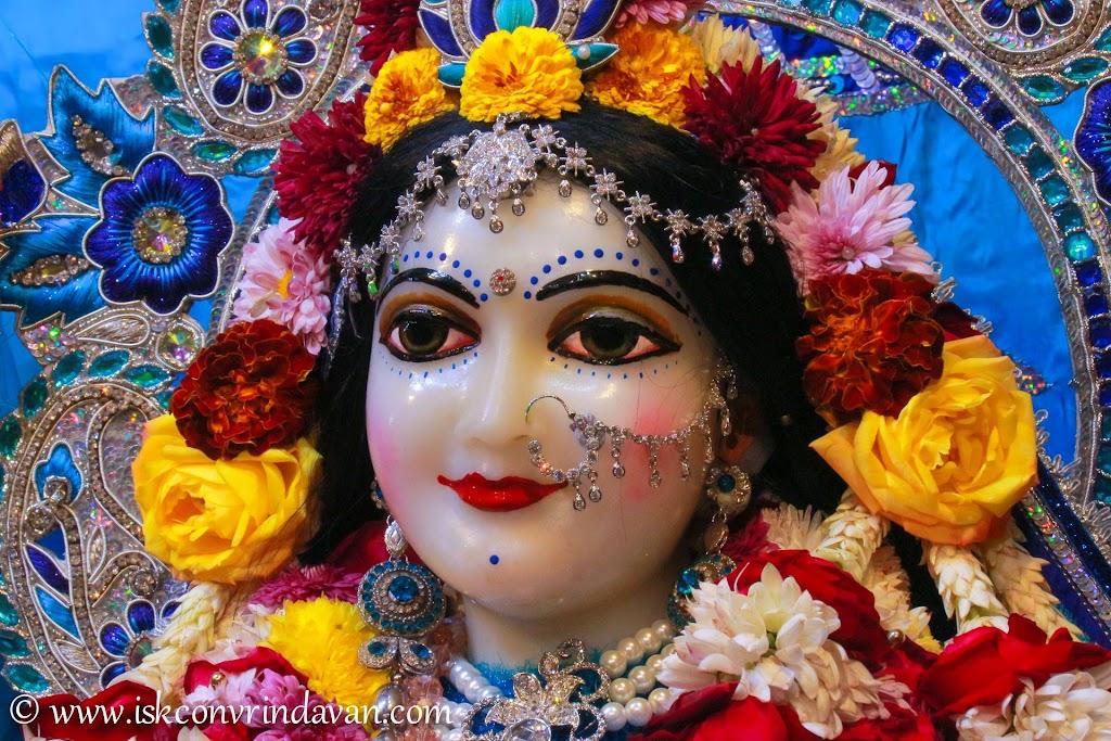 ISKCON Vrindavan Deity Darshan 10 Jan 2017 (16)