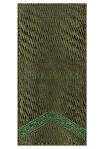 Погон НГ Старший солдат /тк.олива / 10*5 см