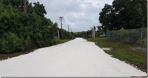 Road (11)