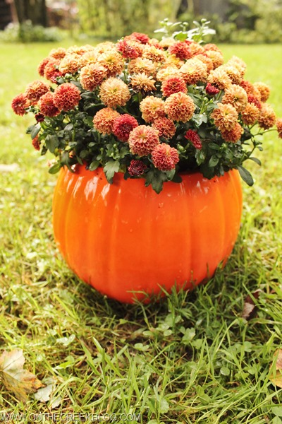 Ceramic Pumpkin with fall mums inside   On The Creek Blog // www.onthecreekblog.com