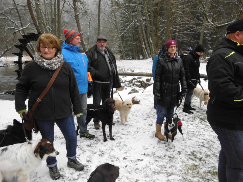 1. Januar 2016: Neujahrswanderung ins Waldnaabtal - DSCI0156.JPG