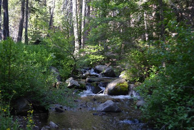 Ninemile Creek