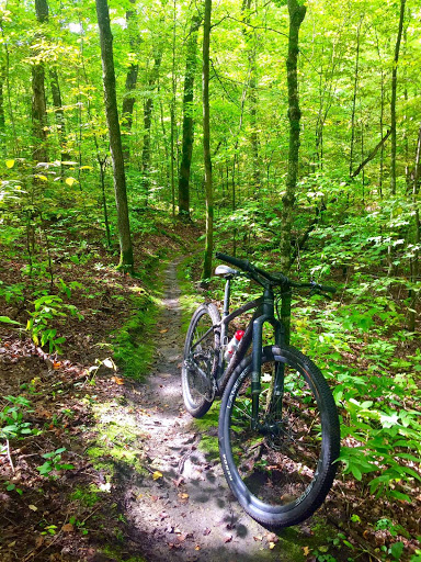 Twin Lakes singletrack. September 16th