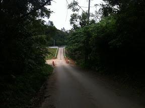 クバ御獄から県道115号線を見たところ