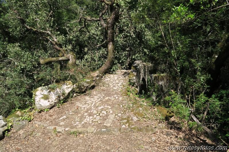 Benaocaz - Salto del Cabrero - Castillo de Aznalmara