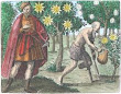 Sendivogius From Maier Symbola Aurea Mensae Franckfurt 1617