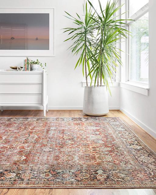 LOLOI throw rug with a vintage look