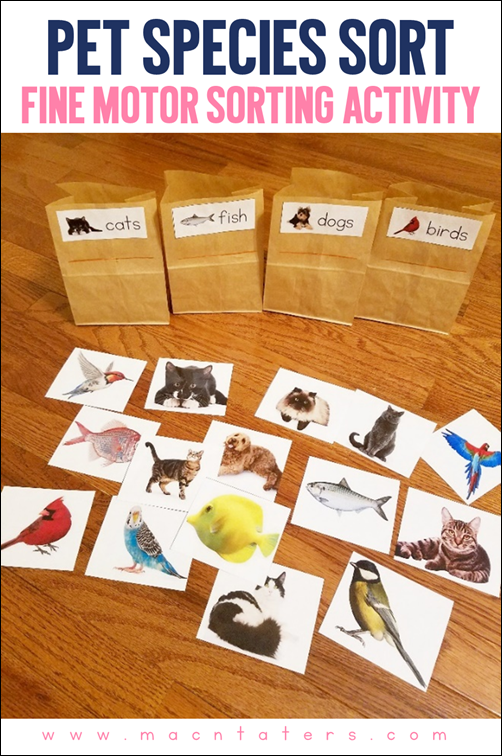 Pet Species Fine Motor Sorting Activity