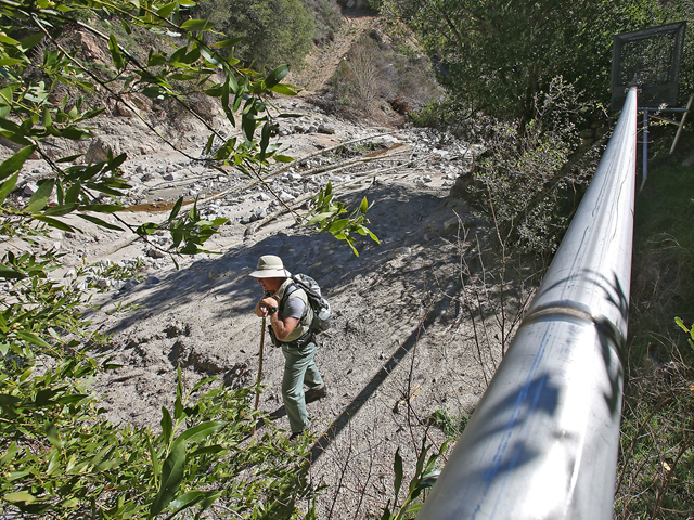Retired Forest Service employee Gary Earney pauses with his walking stick after hiking to Strawberry Creek, where a pipe carries spring water across the national forest to be bottled. Photo: Jay Calderon / The Desert Sun