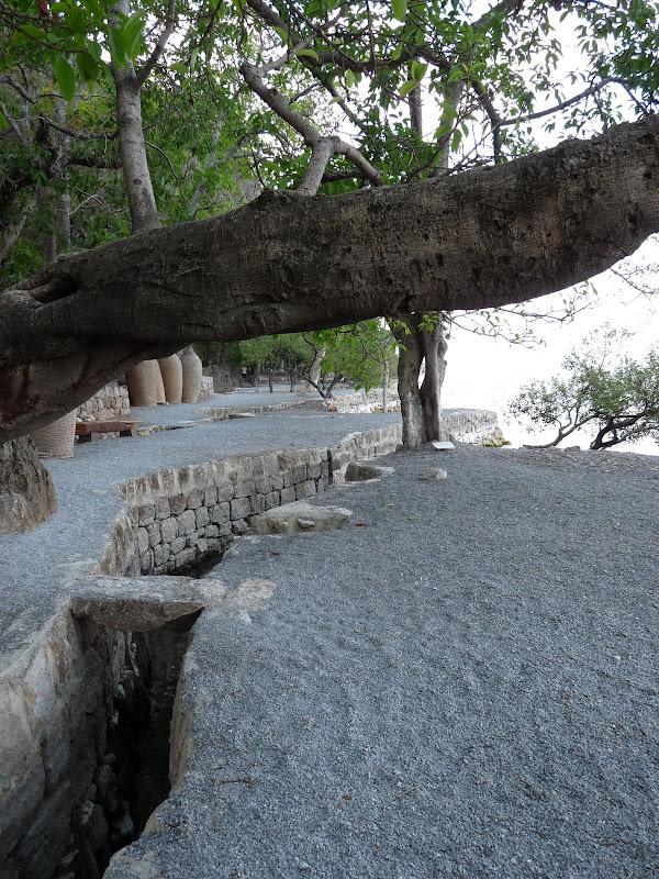 Chine .Yunnan . Lac au sud de Kunming ,Jinghong xishangbanna,+ grand jardin botanique, de Chine +j - Picture1%2B188.jpg