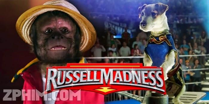 Ảnh trong phim Chú Chó Đô Vật - Russell Madness 1