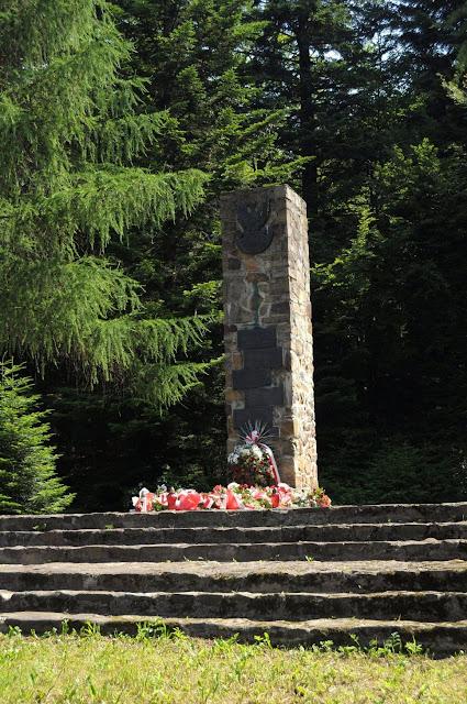 W Polanach Surowicznych - 18.06.2011_037.jpg