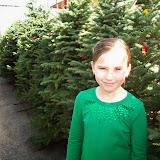 Christmas Lights - 115_8859.JPG
