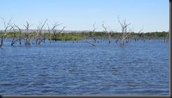 170531 055 Kununurra Lake Kununarra and Celebrity Park