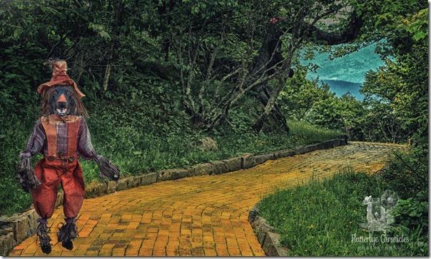 Yellow Brick Road Background 23