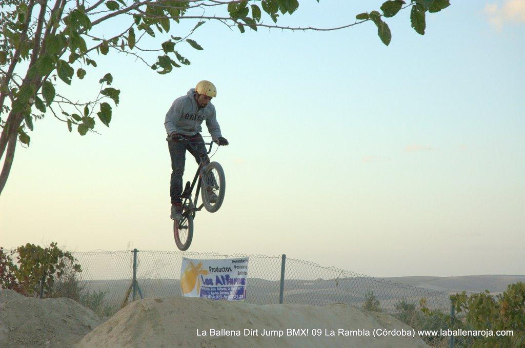 Ballena Dirt Jump BMX 2009 - BMX_09_0151.jpg