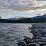 Lotsoftropicalplants Alexander Williams's profile photo
