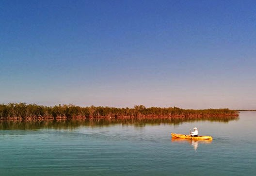 Best kayaking in Key Largo experience.
