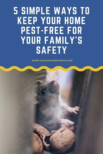 Pest-free home