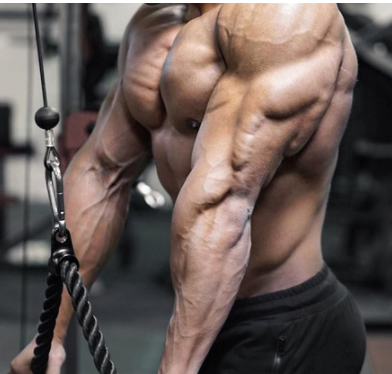 brutal chest and tricep workout