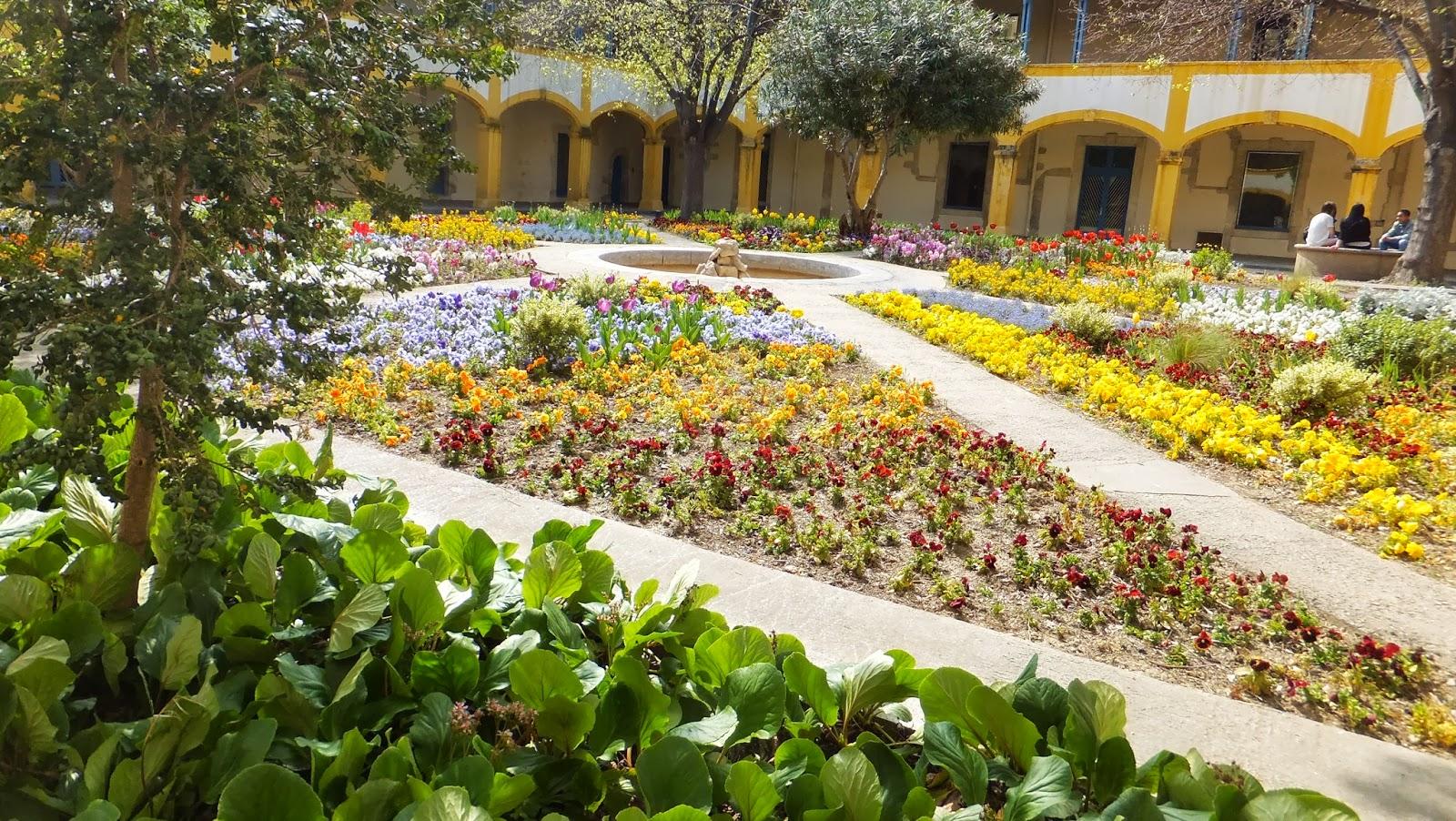 Espace Van Gogh, Arles, Provence, Fancia, Elisa N, Blog de Viajes, Lifestyle, Travel
