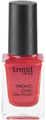 4010355285522_trend_it_up_Tropic_Chic_Nail_Polish_010