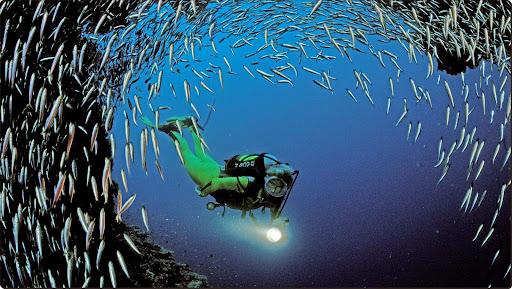Scuba Diving Near Ari Atoll, Indian Ocean(2).jpg