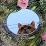 Lisa V's profile photo