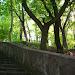 Park między Zamkiem a Kirkutem