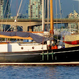 Sailing and Mt Tom Taylor