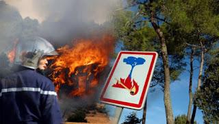 Feux de forêts: 537 hectares détruits dans 174 incendies en une semaine