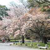 2014 Japan - Dag 10 - marjolein-IMG_1384-0167.JPG
