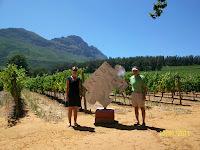 Winery visits - Stellenbosch, South Africa