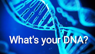 What is your DNA?