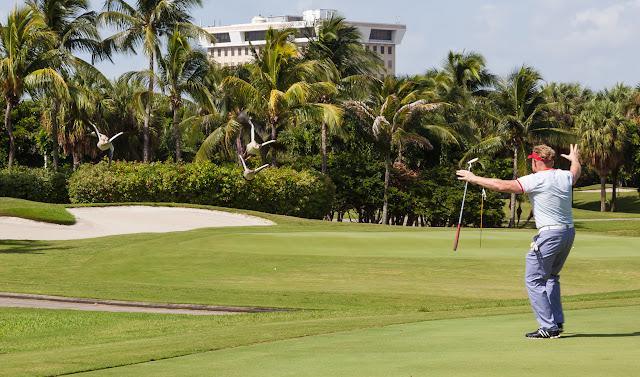 2015 Golf Tournament - 2015%2BLAAIA%2BConvention-1573.jpg