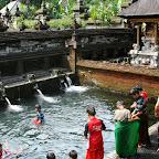 0557_Indonesien_Limberg.JPG
