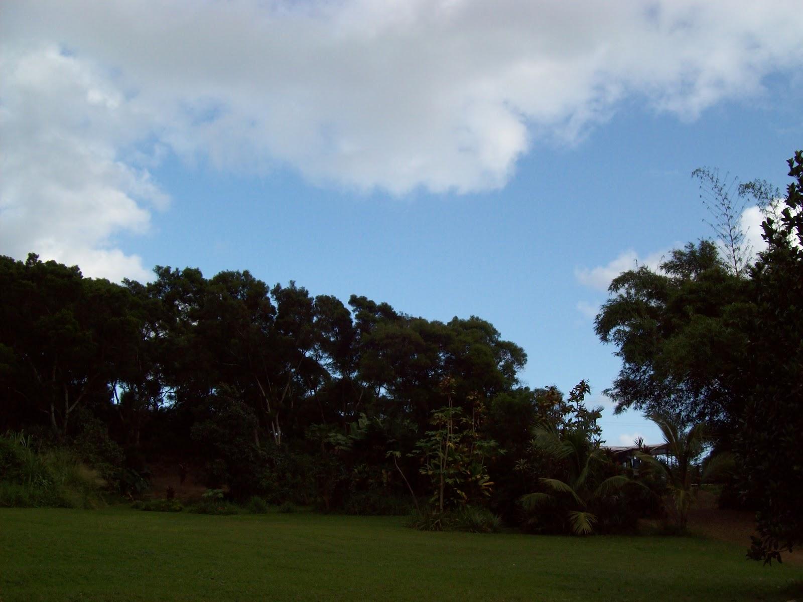 Hawaii Day 5 - 100_7334.JPG