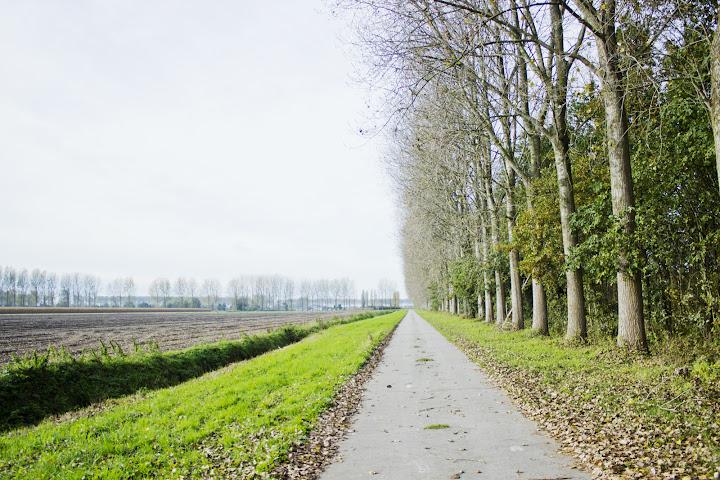 autumn landscape in belgium